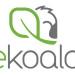 Brand e immagine coordinata eKoala